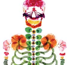 A pressed flower skeleton bucks the trend in advertising for funeral services in Japan by celebrating life. See the rest on Colossal:  http://www.thisiscolossal.com/2013/05/a-japanese-ad-agency-reinvents-advertising-for-funeral-services