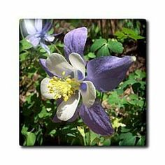 Image of Wooden Heart Purple and Yellow Flowers on Tag T-Shirts Ribbon 3dRose Beverly Turner Flora Design