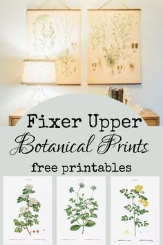 Home Decor Joanna Gaines Fixer Upper rustic farmhouse inspired free printable botanical illustration Country Farmhouse Decor, Vintage Farmhouse, Modern Farmhouse, Farmhouse Style, Primitive Country, Country Homes, Farmhouse Wall Art, Fixer Upper Living Room, New Wall