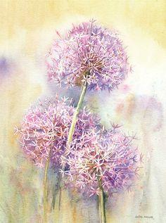 Anita Pegler - Allium