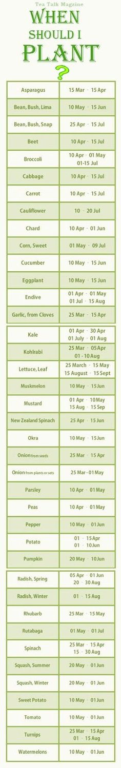 A complete guide to seasonal planting for every veggie!