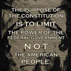 Limit the power of the federal government... Not the American people!