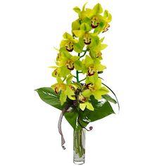 """Букет """"Дикая орхидея""""  – заказать в Украине"""