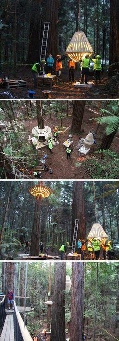 New Zealand basierten Designer David Trubridge und Redwoods Treewalk Rotorua zusammengearbeitet haben, erstellen Redwoods Nachtlichter Neuseelands erste Design führte Tourismus Erfahrung mit spazieren hängende Baum von 30 Trubridge benutzerdefinierte gemachten hellen Befestigungen umgeben.