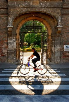 Toulouse, Jardin des plantes by zacadroid, via Flickr FRANCE. http://www.fasthotel.com/midi-pyrenees/hotels-toulouse-pas-cher
