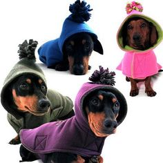 Some day I will have a small dog, and they will wear a coat! Dachshund Clothes, Dachshund Love, Pet Clothes, Daschund, Pet Fashion, Animal Fashion, Dog Accesories, Pet News, Teacup Puppies