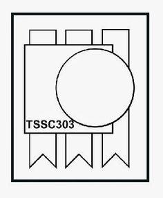TSSC303