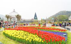 Two Days of Cultural Fun in Suwon & Yongin, Gyeonggi-do