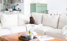 A comfy corner EKTORP sofa fits all the family, including the cat! | Getting cosy in Eva's living room in Poland | @mintyhouse