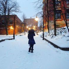 Día nevado / Snowy day #travel #viajar #viaje #tipsdeviajero #travelblogger #Halifax #VisitNovaScotia Con @happiesttraveler