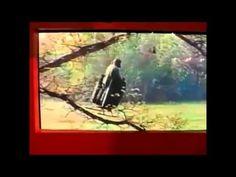 Viktor Grebennikov #1 - Testing Scarab (June Bug) Wing Covers - YouTube