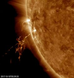 A small eruption blew a bright, disjointed stream of plasma into space (Oct. 18, 2017). The source of the blast was just out of sight beyond the edge of the sun. Images from SOHO's coronagraph instruments show a bright loop of material heading away from the sun near this same area. The video, taken in extreme ultraviolet light, covers just two hours of activity. (Credit: Solar Dynamics Observatory, NASA)