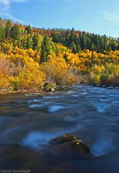 fall-colors-above-logan-river-cache-valley-utah