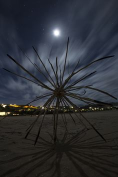 """PINTEREST 20 Aug. Joshua de Vries (photo). 'Radial Symmetry' by Cha Davenport at Lookout Beach in Plettenberg Bay. """"I wonder at the simple and elegant symmetry and patterning of molecules, universal structures and everything in between."""" Site_Specific #LandArtBiennale. #LandArt"""