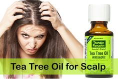 Here is the list of various methods to solve dry scalp, itchy scalp, etc. using Tea Tree Oil. Itchy Scalp Treatment, Hair Loss Treatment, Hair Treatments, Natural Treatments, Tea Tree Oil Antiseptic, Dry Scalp, Psoriasis Scalp, Essential Oils, Kinky Hair