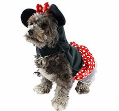 USDREAM Pet Costume Afro Curly Wigs with Adjustable Elastic Chin Strap for Dogs Cats Puppy Red