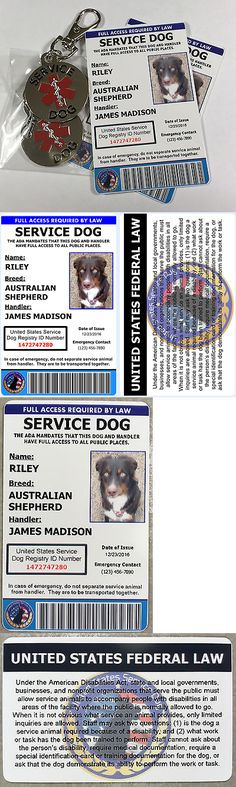 Tags and Charms 177790: Service Dog Id With Copy And Service Dog Tags - Includes Registration -> BUY IT NOW ONLY: $35.98 on eBay!