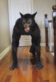 Werewolf X by Mago2007.deviantart.com on @deviantART