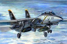 F-14B Tomcat (H. Sasaki & T. Kurokawa)