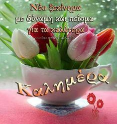 Cute Good Morning Images, Good Morning Good Night, Beautiful Pink Roses, Greek Quotes, Happy Wednesday, Happy Easter, Walt Disney, Greece, Education