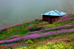 Nature of Khalkhal, North of Iran travel to Iran with us  http://comingtoiran.com/