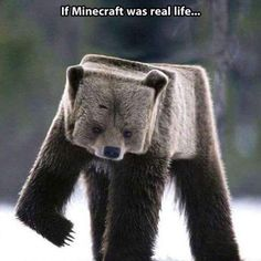 Funny pictures about If Minecraft was real. Oh, and cool pics about If Minecraft was real. Also, If Minecraft was real. Humor Minecraft, Minecraft Stuff, Minecraft Quotes, Minecraft Ideas, Minecraft Real Life, Minecraft Quilt, Minecraft Wall, Photomontage, 9gag Funny