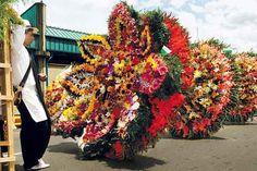 Desfile De Silleteros De Medellin