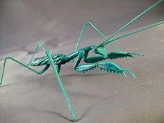 Praying Mantis - Michael Mangiafico