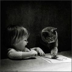 Katzen sind die rücksichtsvollsten und aufmerksamsten Gesellschafter, die man sich wünschen kann. Pablo Picasso