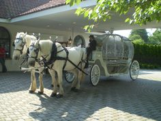 Cinderella carriage provided by North Jersey Carriage Company at Perona Farms