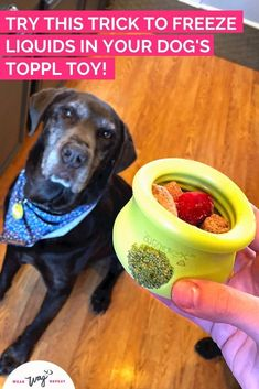 If you already have a West Paw Toppl dog toy and you've been filling it with treats and food for your dog, you might have run into issues with the giant hole in the front! It's hard to fill the Toppl with liquid like bone broth and freeze it without most of your stuffing dripping out of that hole. Check out this fun blog post and video I created that shows a bunch of colorful ways to stuff the hole in your West Paw Toppl to make it into a more challenging canine enrichment toy for your dog. Black Lab Mix, Brain Games For Dogs, Chocolate Labs, Interactive Dog Toys, Labrador Retrievers, Find Pets, Mom Blogs, Dog Friends, Dog Mom