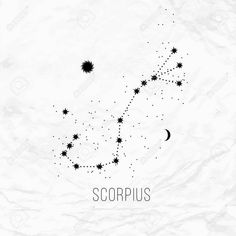 Scorpio Male, Animals, Tatoo, Paper Envelopes, White Paper, Astrology Signs, Scorpio, Tattoo Drawings, Wallpapers