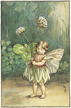 Illustration for the White Clover Fairy from Flower Fairies of the Summer. A small girl fairy stands holding two white clover flowers.    Author / Illustrator  Cicely Mary Barker