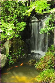 45 special diy garden pond waterfall ideas diy container water garden pond in a pot Ponds Backyard, Backyard Landscaping, Garden Ponds, Fountain Garden, Pond Fountains, Outdoor Fountains, Koi Pond Design, Fountain Design, Garden Waterfall