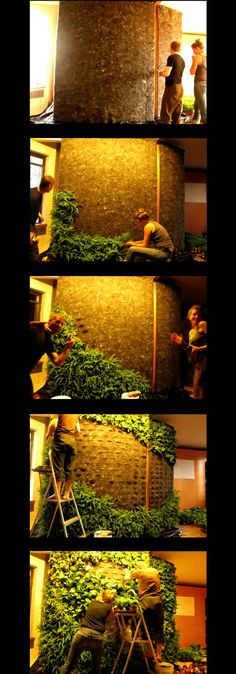 bit-of-green site has now expired, so no instructions on how to make this vertical garden or ability to make the picture larger...there doesn't seem to be another non-pinterest reference on the web. Does anyone have any more info on what the backing is and how it is watered?