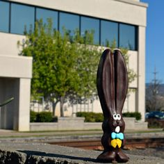 Ears is enjoying a moment of sun on the Harry & David campus. #allears #Easter