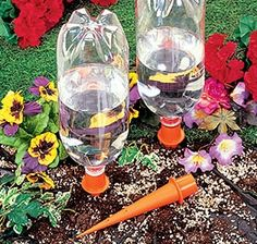 Irrigation Spikes