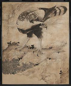 Hawk,  Taka zu.  Japanese Edo period,  possibly 1763.  Soga Shôhaku (Japanese, 1730–1781)