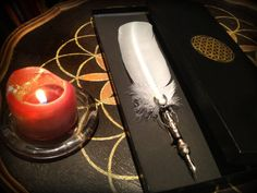 Handmade Feather Quill PEN OIO Unique Silver Plate by LightScribes