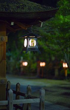 Evening | Flickr - Photo Sharing!