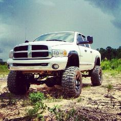 "Chevy all the way but y'all know  Dodge are one bad ass trucks to.....""9""lol"