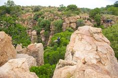 Magaliesberg Photo Gallery | Canopy Tours, South Africa