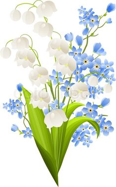 lily of the valley drawings - Google'da Ara