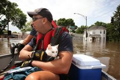 15 Pictures Of Cats Saved By Firemen