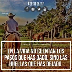 Cowboy Quotes, Mexican Heritage, Jenni Rivera, Funny Love, Spanish Quotes, Vip, Qoutes, Thoughts, Humor