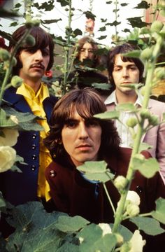 The Beatles during The 'Mad Day Out photo session by Don McCullin to promote the upcoming White Album, 28th July 1968 (via @HistoryTime_)