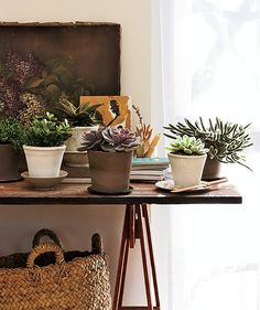 25 Easy Decorating Tips | The Cottage Market