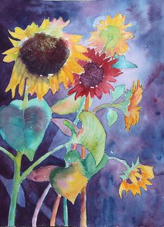 'Sunflower Color,' by Nancy Jolley