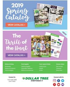 TINGLER SCRPT used in the Easter and spring catalogs at Dollar Tree! Candy Drinks, Disposable Tableware, Dollar Tree, Drinkware, Dinnerware, Kitchen Dining, Party Supplies, Catering, Balloons