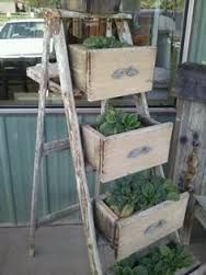 Image result for old ladder garden ideas